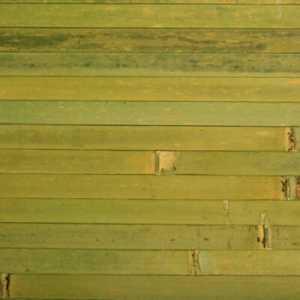 бамбук лайм для шкафов-купе