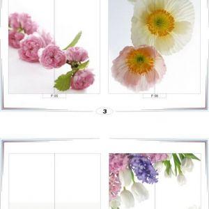 фотопечать для шкафов купе цветы 3 и 4