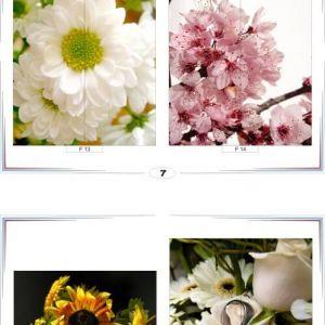 фотопечать для шкафов купе цветы 7 и 8