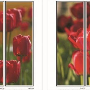фотопечать для шкафов купе цветы 101 и 102