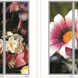 фотопечать для шкафов купе цветы 117 и 118