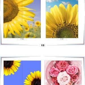 фотопечать для шкафов купе цветы 15 и 16