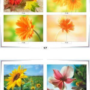 фотопечать для шкафов купе цветы 17 и 18