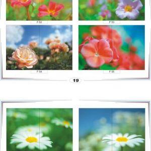 фотопечать для шкафов купе цветы 19 и 20
