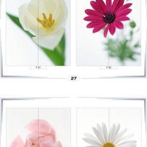 фотопечать для шкафов купе цветы 27 и 28
