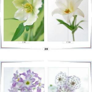 фотопечать для шкафов купе цветы 35 и 36