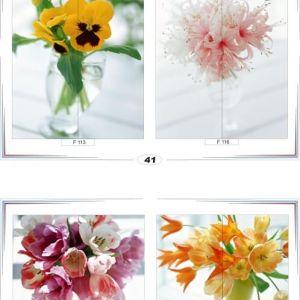 фотопечать для шкафов купе цветы 41 и 42