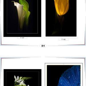 фотопечать для шкафов купе цветы 51 и 52