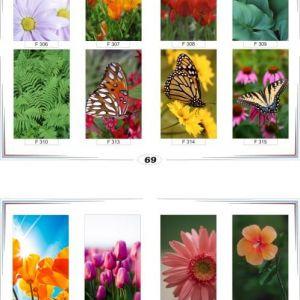 фотопечать для шкафов купе цветы 69 и 70