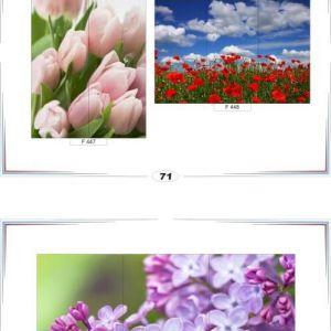 фотопечать для шкафов купе цветы 71 и 72