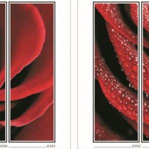 фотопечать для шкафов купе цветы 99 и 100