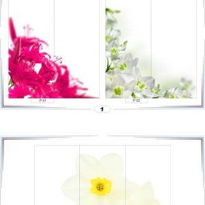 фотопечать природа 1 и 2