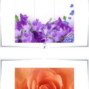 фотопечать природа 7 и 8