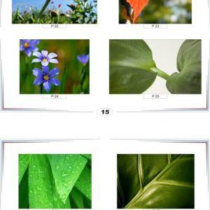 фотопечать природа 15 и 16
