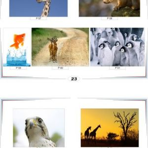 фотопечать природа 23 и 24