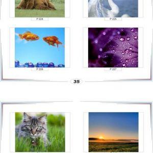фотопечать природа 35 и 36