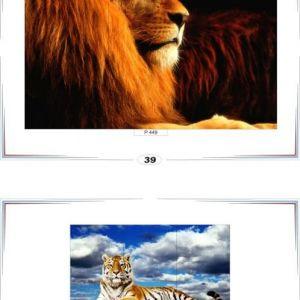 фотопечать природа 39 и 40
