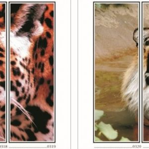 фотопечать природа 81 и 82