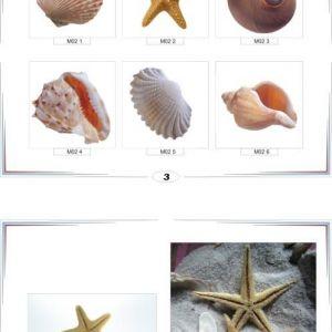 фотопечать море 2