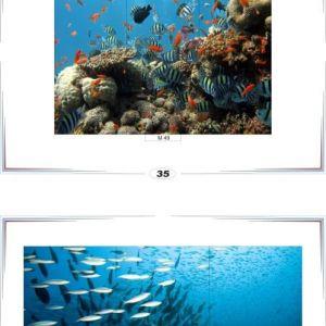 фотопечать море 18