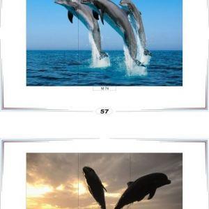 фотопечать море 29